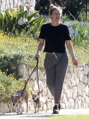 Alicia Silverstone Catches up with a Friend on Dog Walk in LA