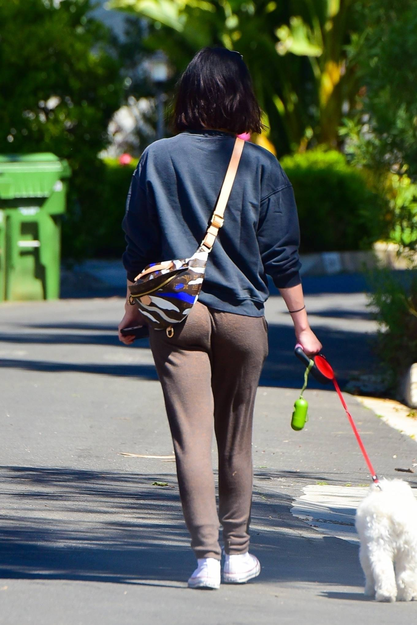 Lucy Hale Walking her Dog Elvis in Los Angeles