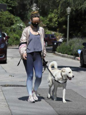 Olivia Wilde Out for a Walk with her Dog Los Feliz