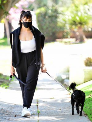 Rebecca Black Walking her Puppy in Orange County