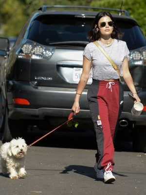 Lucy Hale Walking her Dog Elvis in Studio City